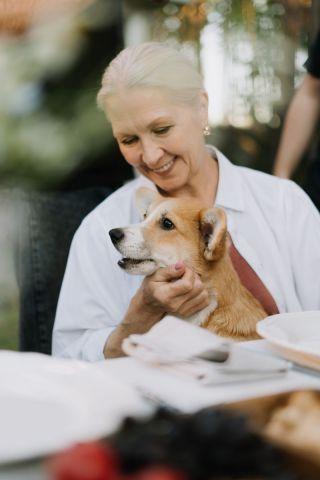 Doneren via nalatenschap voor dierenwelzijn