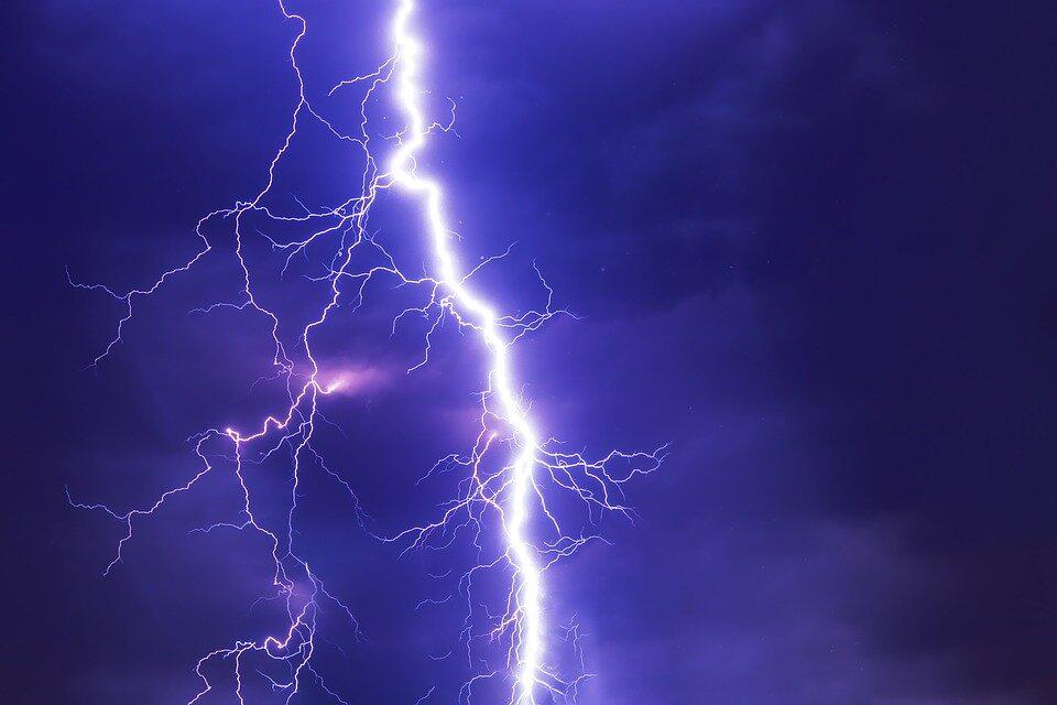 Wat kan je doen als je hond bang is voor onweer?