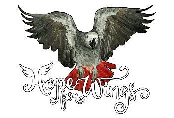 Hope for Wings