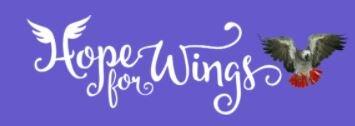 Stg. Hope for Wings