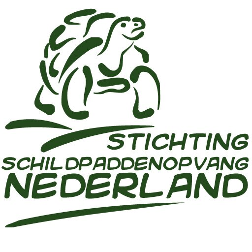 Schildpaddenopvang Nederland