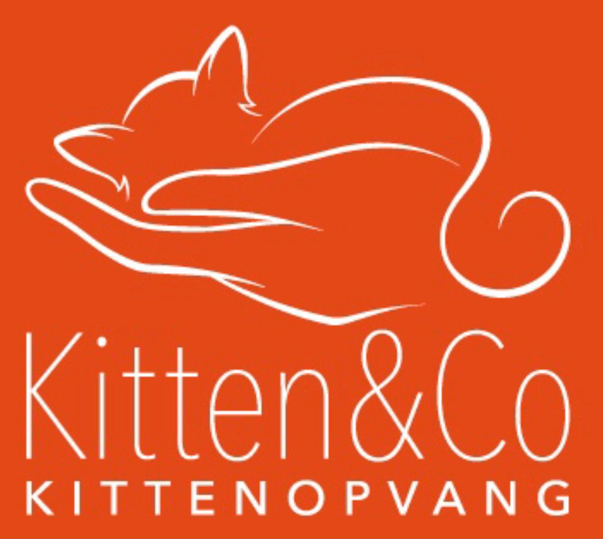 Stichting Kitten & Co